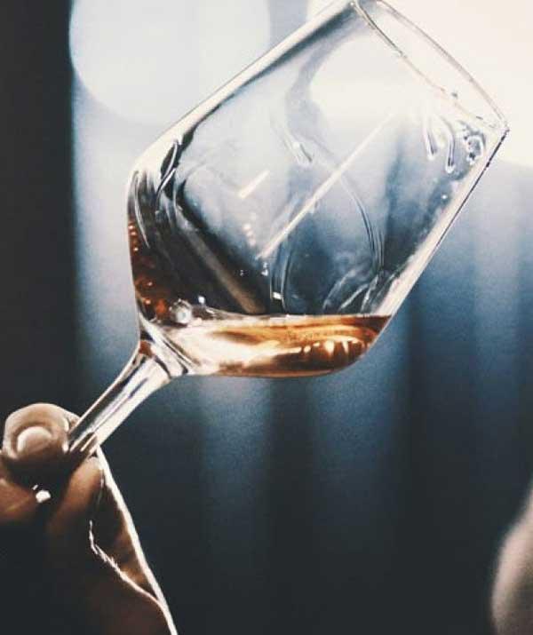 insegnare il vino